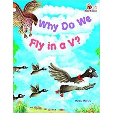 Why Do We Fly In A V?